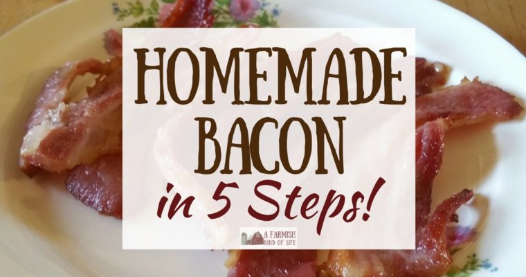 Homemade Bacon: Pig to Plate in 5 Steps