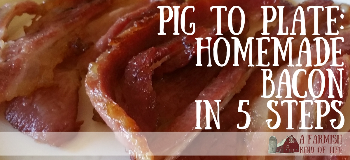 Make Your Own Bacon: Pig to Plate in 5 Steps