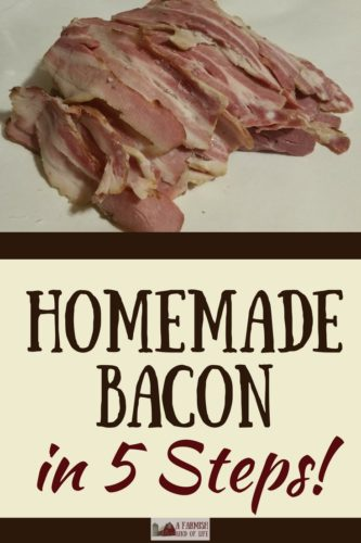 Homemade Bacon: Pig to Plate in 5 Steps - A Farmish Kind of Life