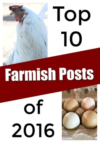 What are the most popular posts from A Farmish Kind of Life...and did your favorite make the list? Here is the best of our best. - A Farmish Kind of Life