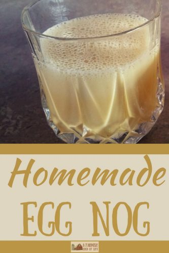 Homemade egg nog is actually a thing, and I'm going to tell you how to make it. You're welcome.