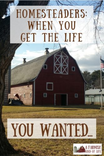 Many crave a simple, self-reliant homestead life. What happens when you finally get it? And if it's your normal, do you celebrate...or take it for granted?