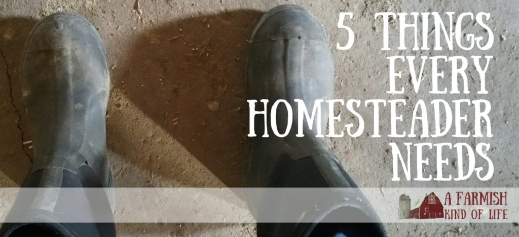 One of my top ten posts - 5 Things Every Homesteader Needs