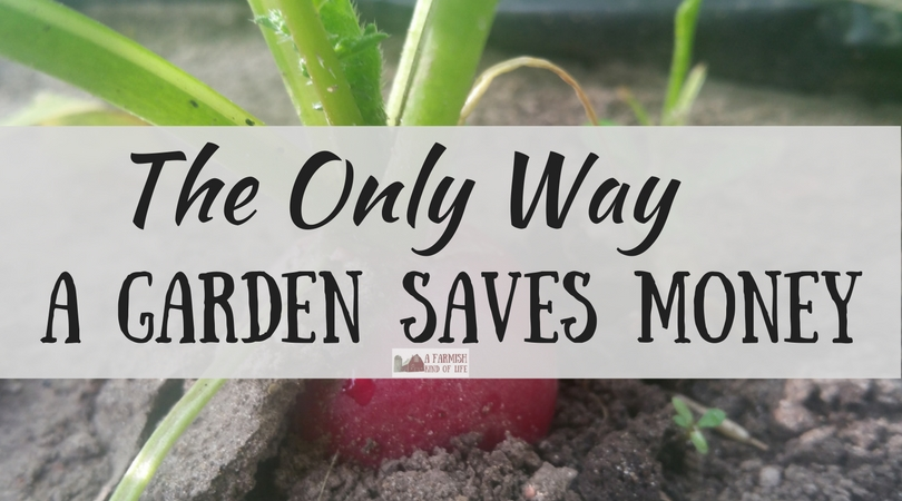 The Only Way a Garden Saves Money