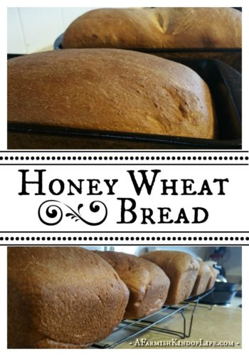 Let me share with you our recipe for Honey Wheat Bread - it's one of our favorite go-to recipes, great for sandwiches! - A Farmish Kind of Life