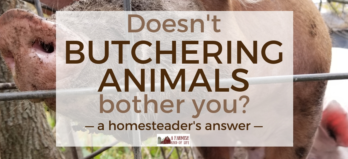 """Doesn't butchering animals bother you?"" Here's my answer…"