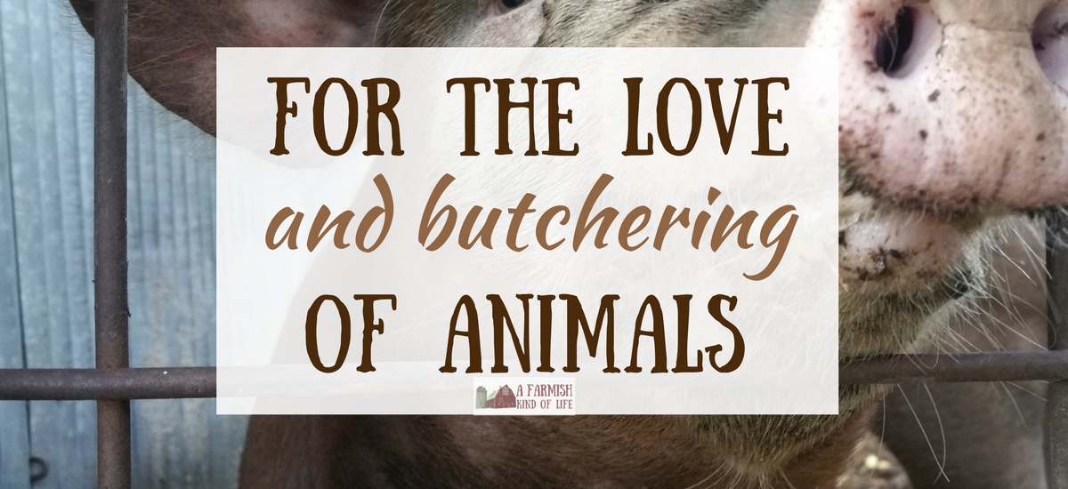 For the love (and butchering) of animals