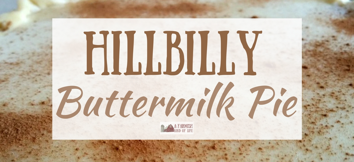Hillbilly Buttermilk Pie