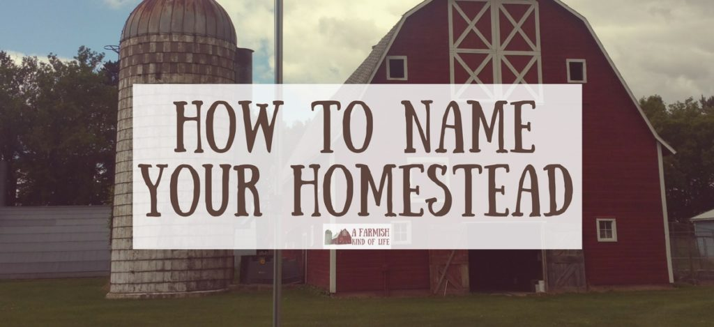 Are you wondering how to name your homestead? Here are a few tips to help you in choosing the perfect name for your place.