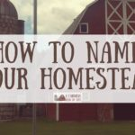 How to Name Your Homestead
