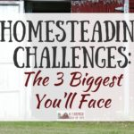 Homesteading Challenges: The 3 Biggest You'll Face