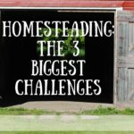 The 3 Biggest Challenges You Will Face as a Homesteader