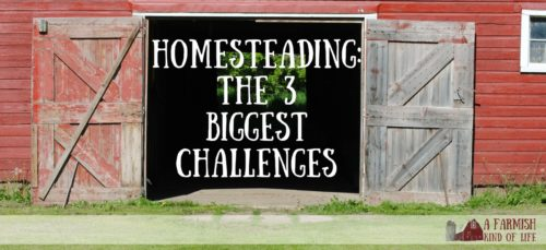 Life as a homesteader is awesome and rewarding and I wouldn't want to live any other way, but there are a few challenges you will face when you decide to live the homesteadin' life. Here are the three most common...