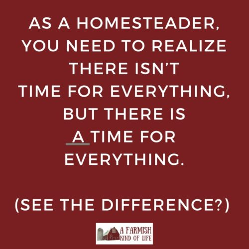 In a perfect homesteading world, gardens flourish, animals thrive, and kitchens produce food. In real life...well, let's talk about homestead failure.