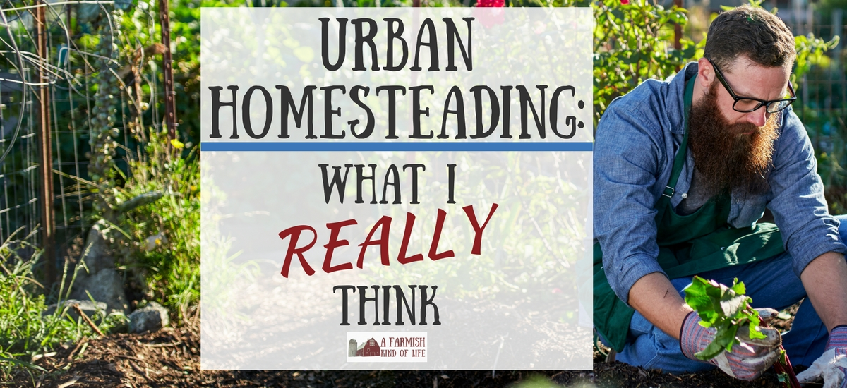 Urban Homesteading: What I Really Think