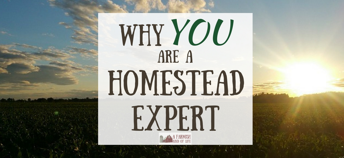 Why YOU are a Homestead Expert
