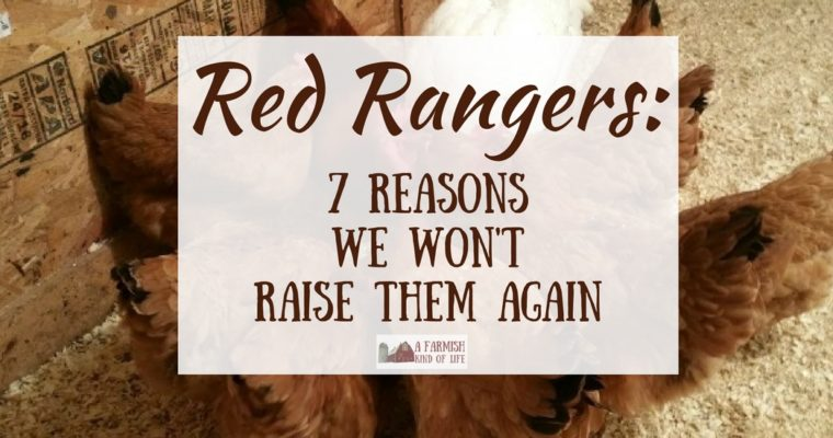 Red Rangers: 7 Reasons We Won't Raise Them Again