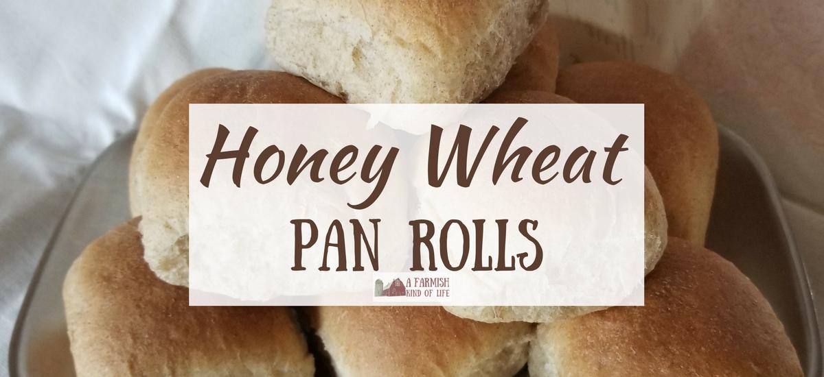Honey Wheat Pan Rolls