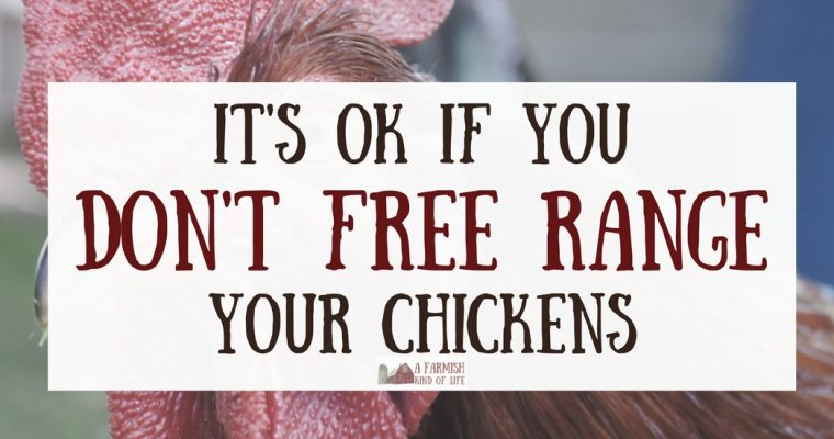 It's Perfectly Okay If You Don't Free Range Your Chickens