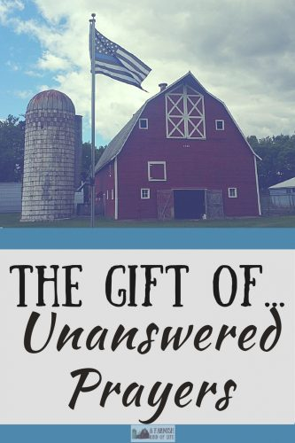Finally ending up on our little farm was amazing and an answer to a prayer. It also explained a lot of unanswered prayers.