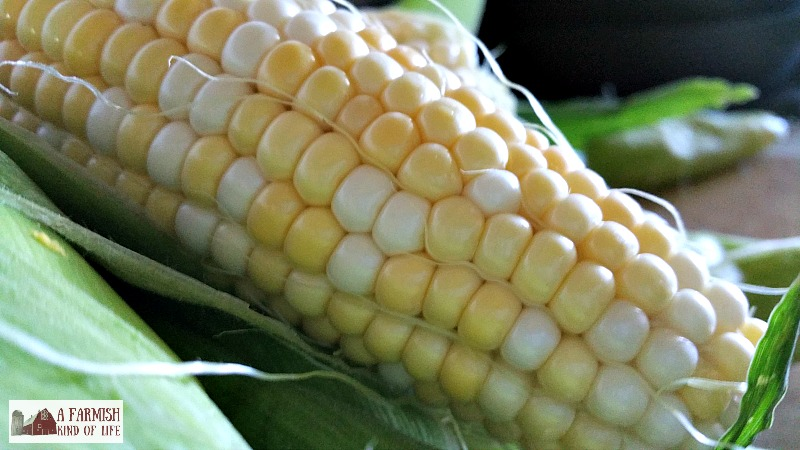 It was a special bowl of sweet corn, but not because of how it was served. No, this bowl of sweet corn was special because we had grown it.