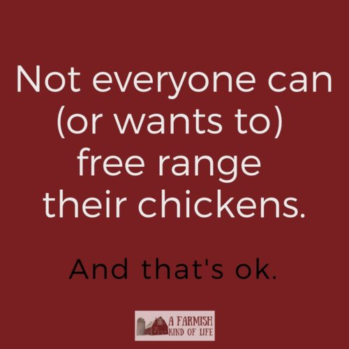 Worried that you're not a good chicken mama if you don't free range your chickens? Pshaw. Here's why you need to stop listening to that advice.