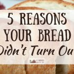 5 Reasons Your Bread Didn't Turn Out