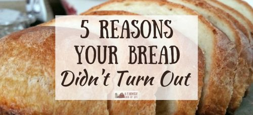 Your bread didn't turn out? Check out these five common reasons that a loaf of homemade bread will sometimes end up as a flop.