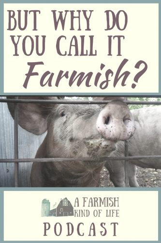 "A lot of people ask why, when I'm so busy on our homestead, that I choose to refer to our life as farm""ish"". Here is my explanation."