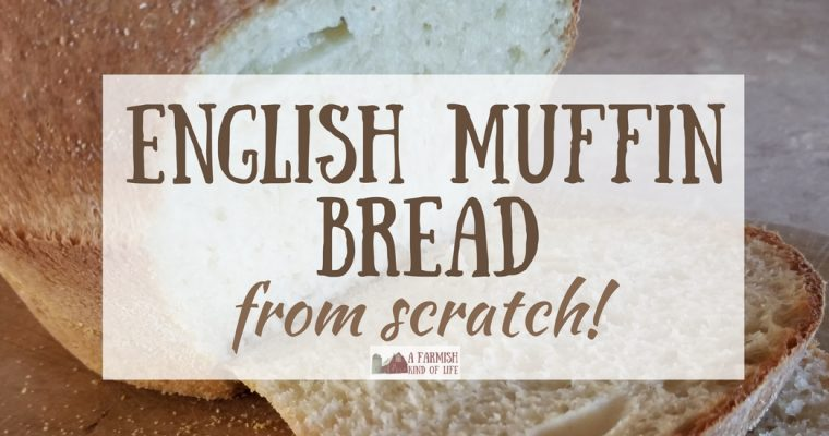 English Muffin Bread From Scratch