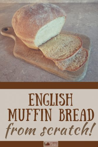 Try your hand at making this English Muffin Bread. It is super easy and awesome. It's also baked in a casserole dish. What the what?