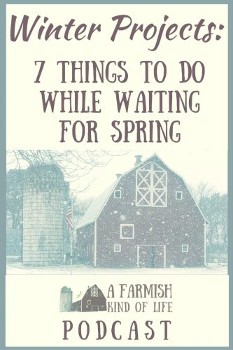 Waiting for spring to come to the homestead? Here are seven winter projects to keep you busy while you wait for warmer weather.