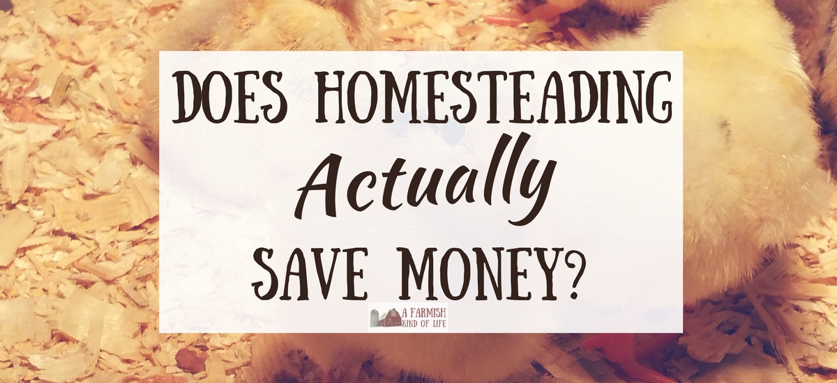 Homestead Costs: Does Homesteading Save Money?