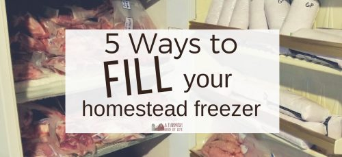 Learn five ways to fill your freezer on the homestead to ensure that you enjoy a bounty of healthy, amazing food throughout the year!