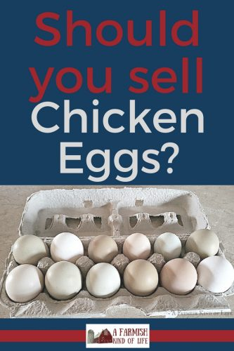 Wondering if it's time to sell chicken eggs from your homestead? Let's look at a few pros, cons, and truths.