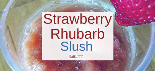 Need an idea for something ELSE to do with rhubarb? How about a yummy strawberry rhubarb slush that can be made with or without alcohol?
