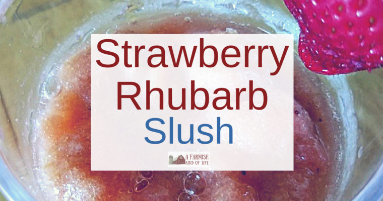 Strawberry Rhubarb Slush