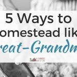 5 Ways to Homestead Like Great-Grandma Did