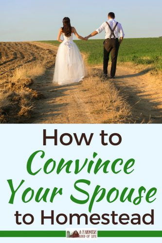 You want to take on a new adventure called homesteading, but your spouse is a definite no. Here are my tips for how to convince your spouse to homestead.