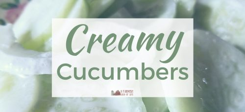 Creamy cucumbers are our favorite thing to do with garden fresh cukes. Make them by the bucketful (like us) and you'll always have yummy side dish.