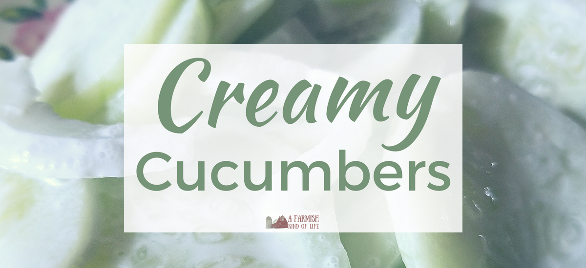 Creamy Cucumbers: Perfect Summertime Side Dish