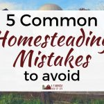 5 Common Homesteading Mistakes to Avoid