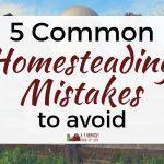 5 Common Homesteading Mistakes to Avoid