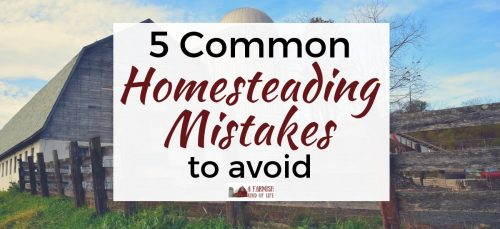 Becoming a homesteader is a huge step into a great adventure, but let's look at five common homesteading mistakes folks make when they start out.