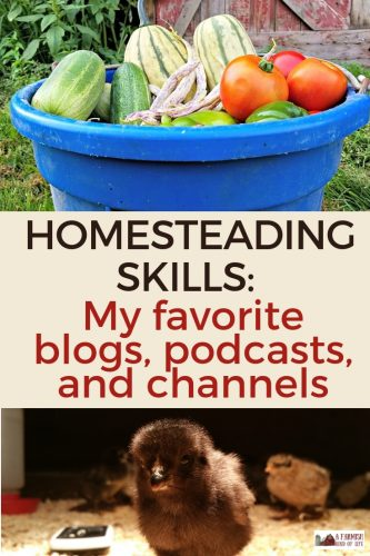 Modern technology gives us so many ways to learn new homesteading skills. Here I talk about my favorite homesteading blogs, podcasts, and YouTube channels.
