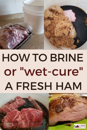 Interested in learning how to turn your pork into ham? Let me share with you how we brine a ham (or wet-cure a ham) here at our farm.