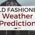 Old Fashioned Weather Prediction Tips