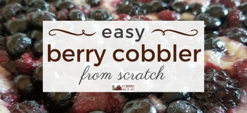Get thee to the kitchen and make this Berry Cobbler. It's an easy recipe and you can use whatever berries are on hand! Your belly will be so very happy.