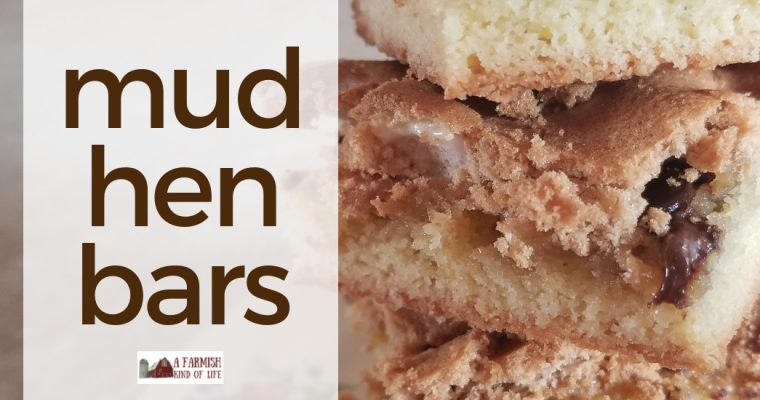 Mud Hen Bars: three layers of delicious