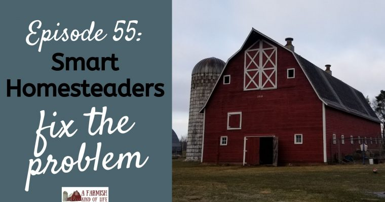 055: Smart Homesteaders Fix the Problem